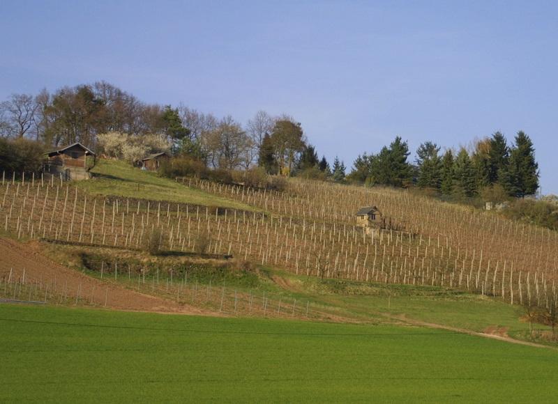 Bamberg Oberhaid